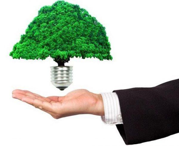 sustentabilidade no trabalho